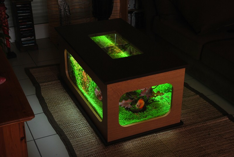 Aquarium table basse nouvel hardscape - Table basse aquarium design ...