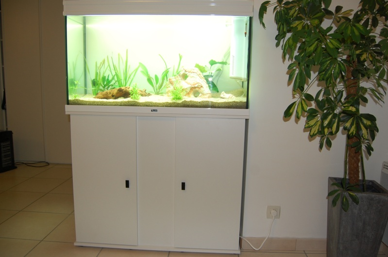 aquarium meuble elegance blanc 179 litres. Black Bedroom Furniture Sets. Home Design Ideas