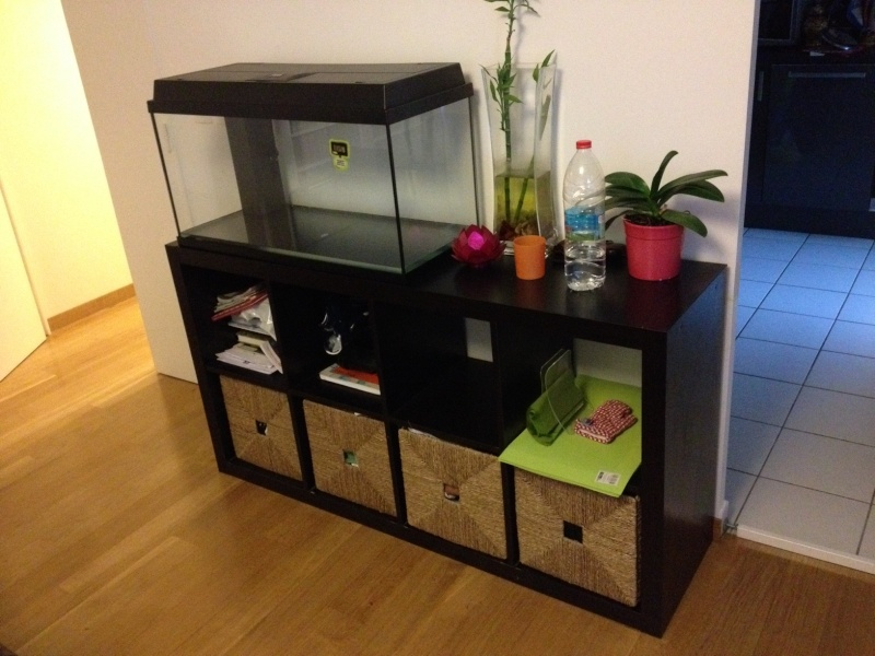 meuble ikea aquarium 100l. Black Bedroom Furniture Sets. Home Design Ideas